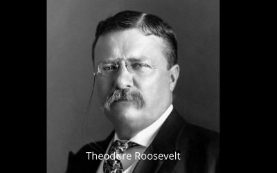 Citizenship in a Republic / The man in the arena, by T. Roosevelt